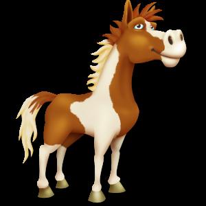 Pinto_Horse